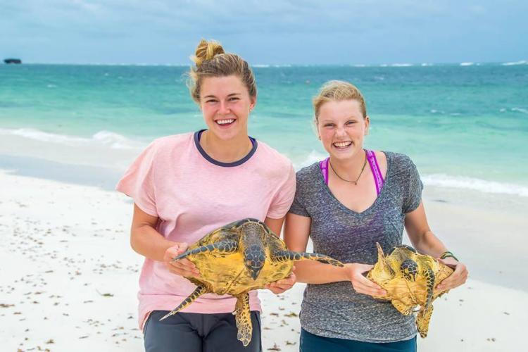 Volunteers holding sea turtles in Kenya