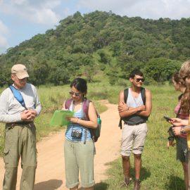 Volunteers in the field