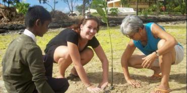 Volunteers planting mangroves