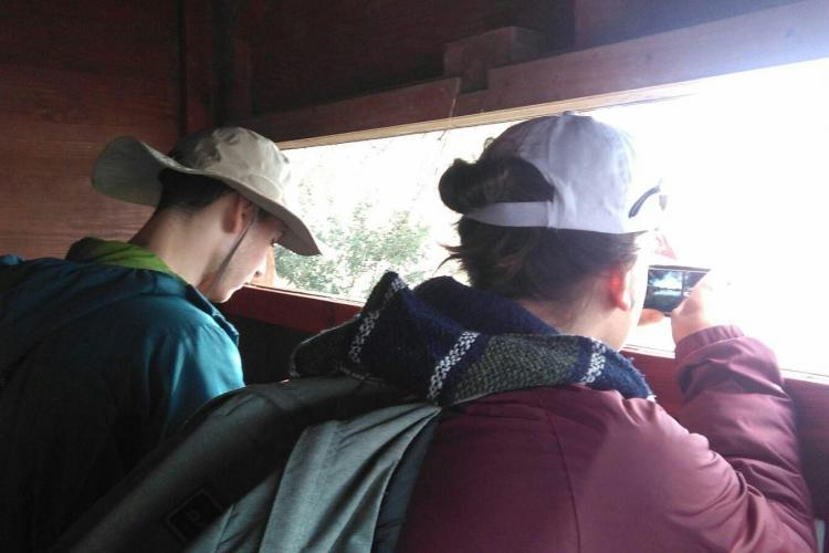 Volunteers observing wildlife in Spain