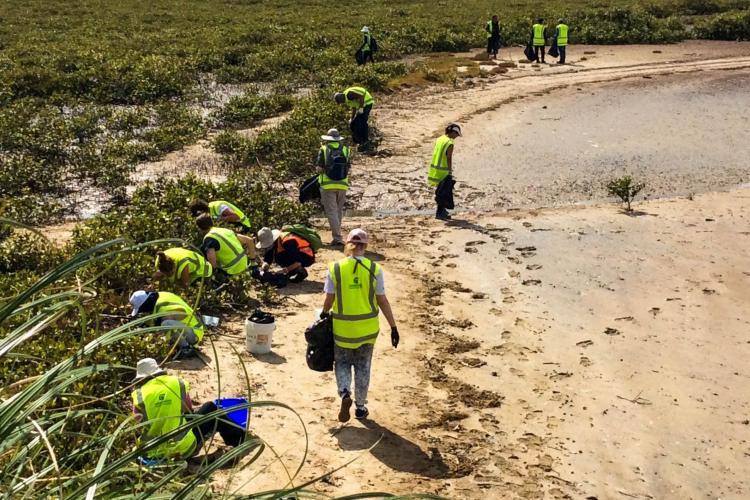 Conservation volunteers on Beach in New Zealand