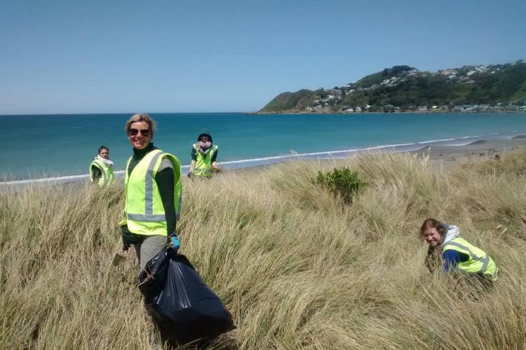 Volunteers on coast in New Zealand