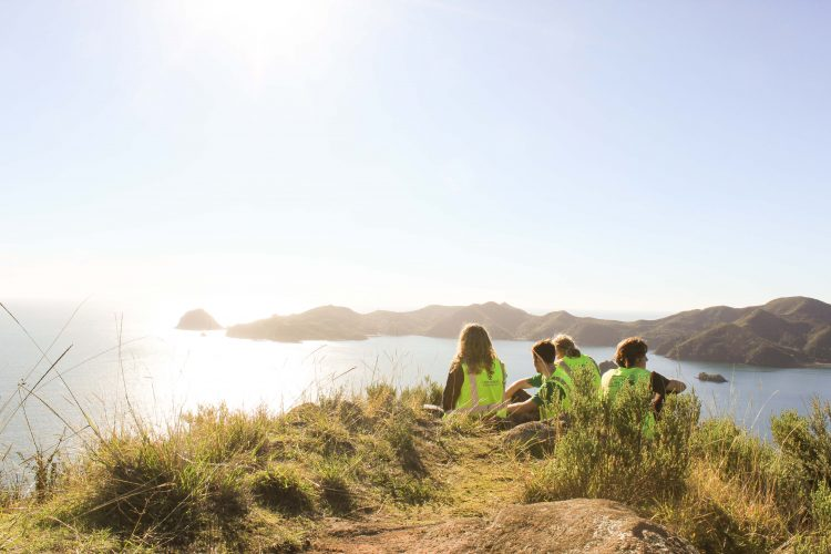 Volunteers on vista in New Zealand