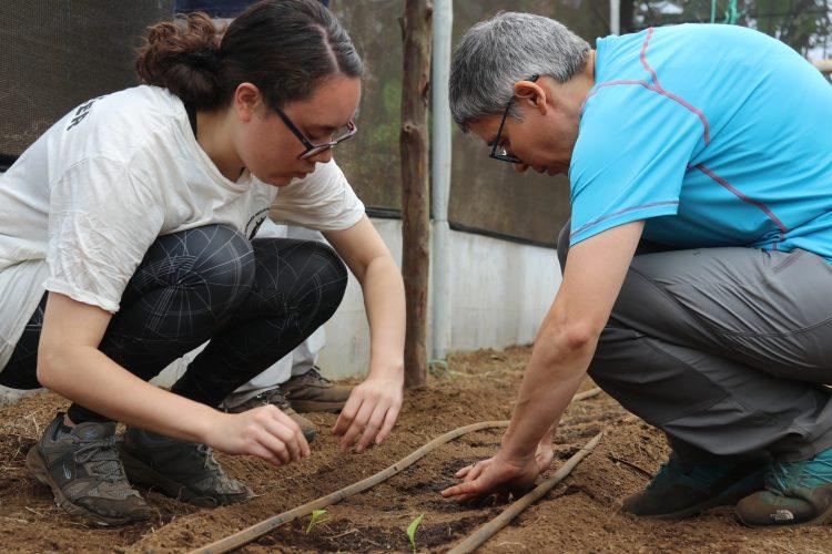Volunteers planting crops in Galapagos