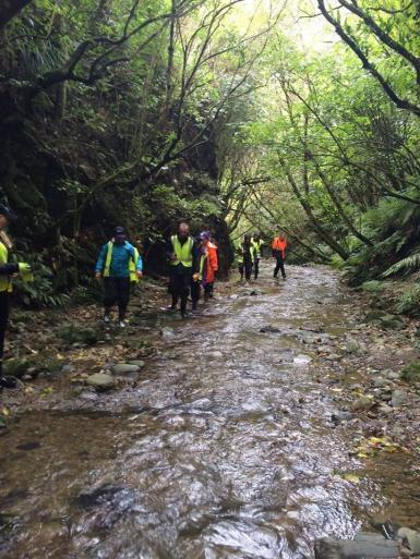 Volunteers walking in river in New Zealand