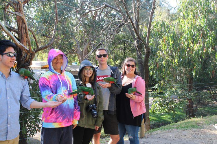 Conservation volunteers in Australia