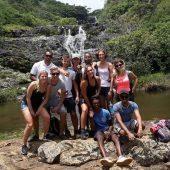 Volunteer Coordination Intern, Mauritius