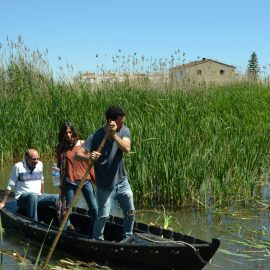 Conservation Volunteers on wetlands in Valencia