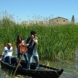 Conservation Volunteers on wetlands in Valencia