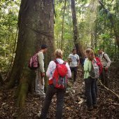 Amazon Forest Ranger for Conservation Programme, Peru