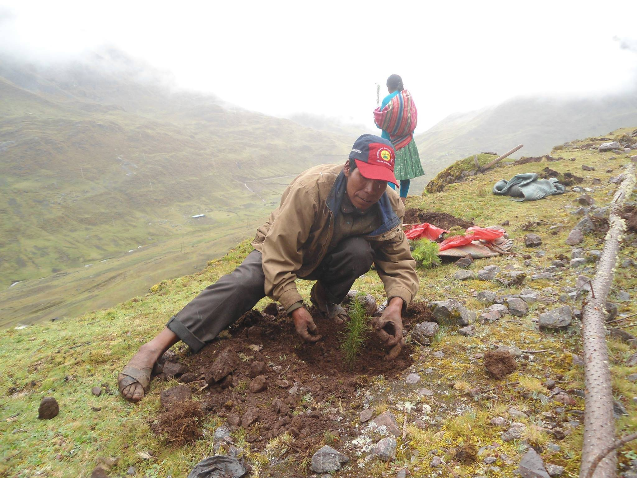 Environmental Community Conservation Volunteer Project, Peru