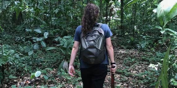 Research intern Amazon Peru