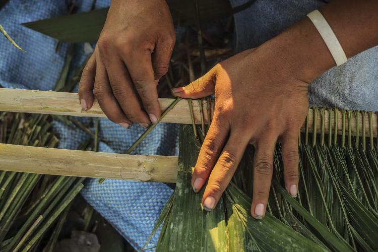 Palm thatch weaving