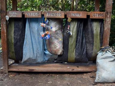 Recycling in Amazon rainforest