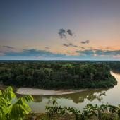 Amazon Research and Conservation Volunteer & Internship Programme, Peru