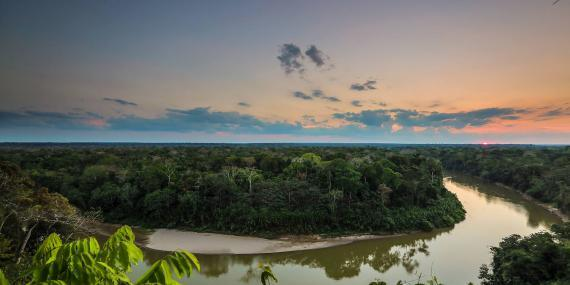 View of Amazon rainforest conservation area