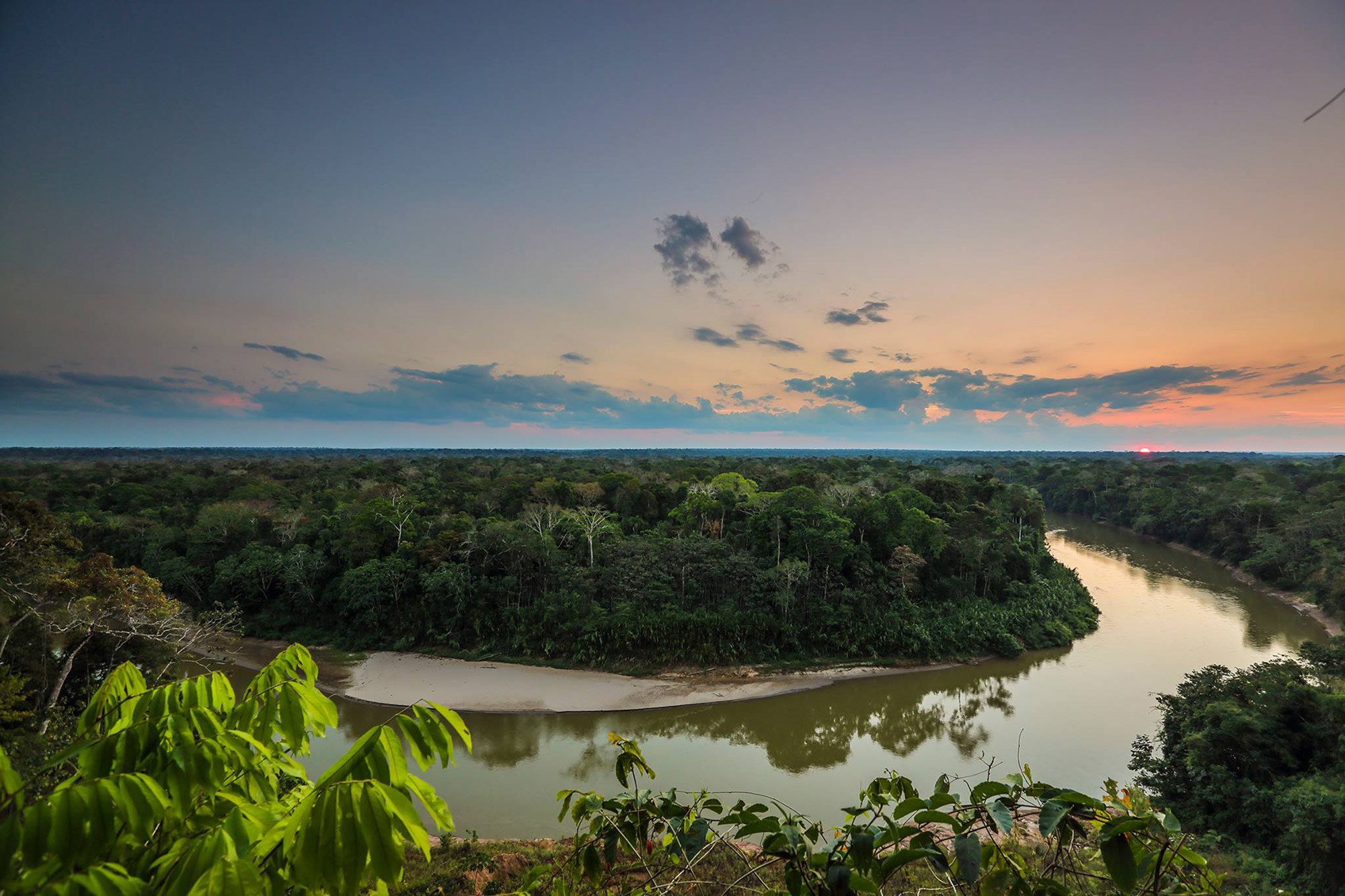 Amazon Research and Conservation Volunteer & Internship Project, Peru