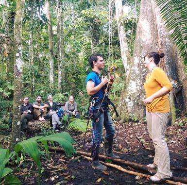 Volunteer climbing tree