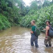 Walking in Amazon stream