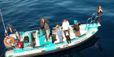 Cetacean research volunteers on boat in Algarve, Portugal