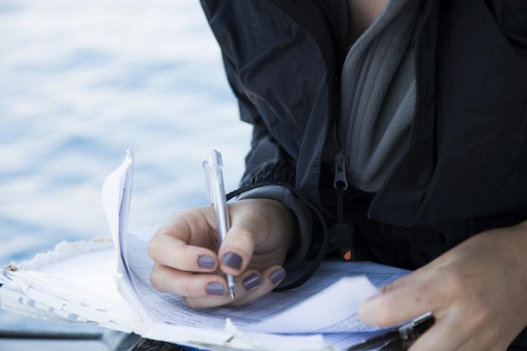 Volunteers recording data in Croatia