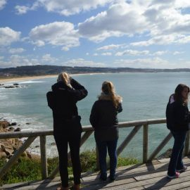 Dolphin conservation volunteers in Galicia