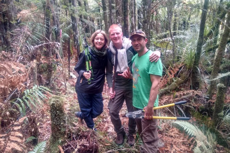 Conservation volunteers in New Zealand forest