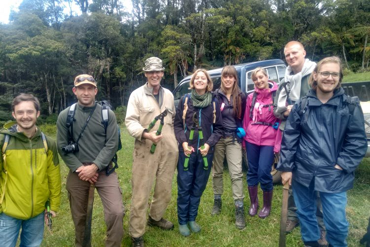 Forest conservation volunteer group New Zealand