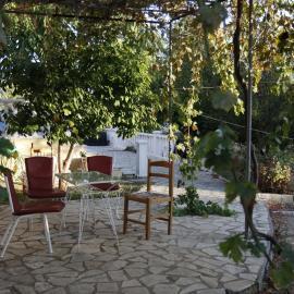 Garden Argostoli volunteer house