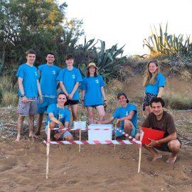 Sea turtle monitoring volunteers in Greece
