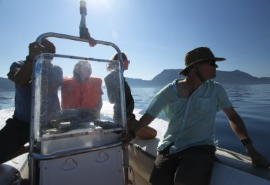 Volunteers on boat in Greece researching dolphins Volunteer Greece | Volunteer with Dolphins | Working Abroad