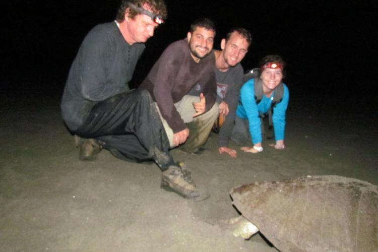 Volunteers with sea turtle in Costa Rica
