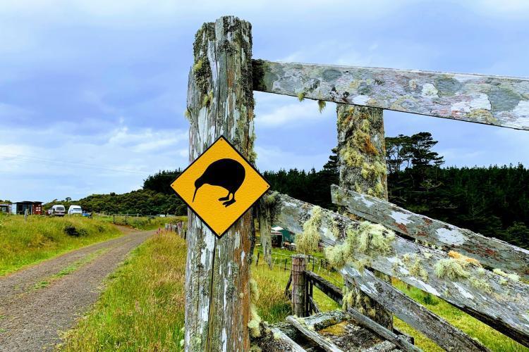 Kiwi conservation sign New Zealand