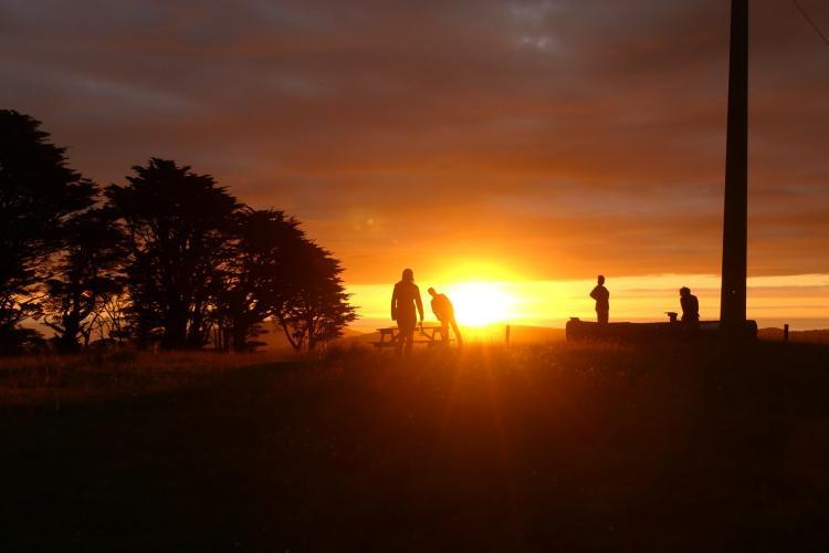 Sunset at New Zealand nature reserve