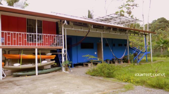 Volunteer centre Playa Tortuga
