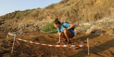 alttagVolunteer with Turtles | Volunteer Greece