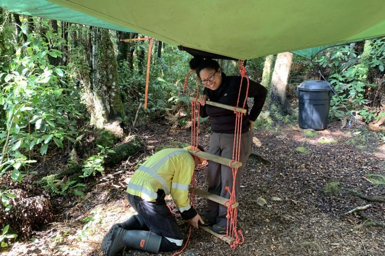 Setting up tree tent in New Zealand