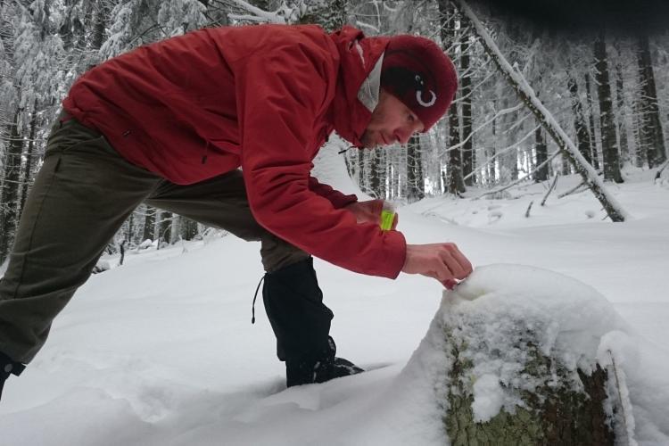 Volunteer setting Camera trap in Slovakia