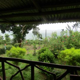 View of forest from Balcony in Costa Rica