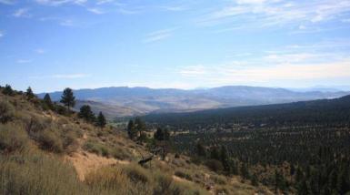Views around Galena Creek in Nevada