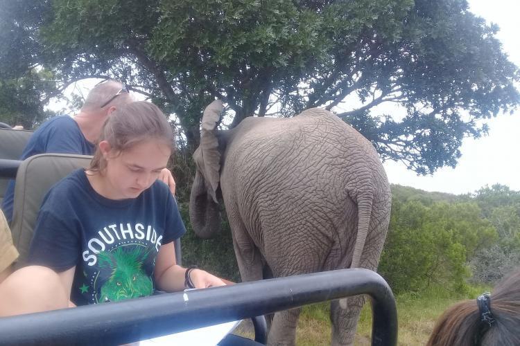 Volunteer collecting data on elephants at Kariega