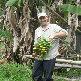 Volunteer collecting bananas in cloud forest Ecuador