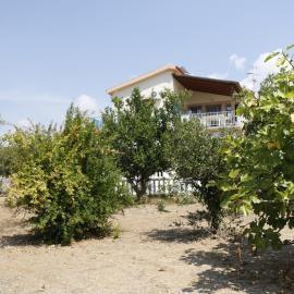 Volunteer house and garden in Argostoli