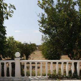 Garden of volunteer house in Greece