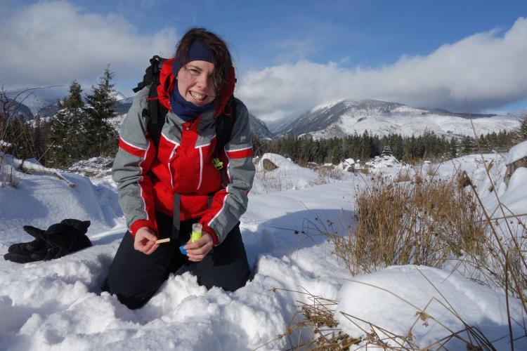 Conservation volunteer collecting wolf sample Slovakia