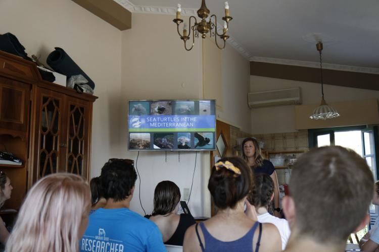 Sea turtle volunteer lecture in Greece