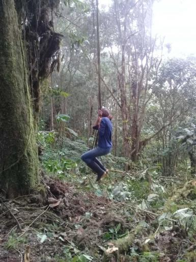 Volunteer on tree swing in Ecuador frest