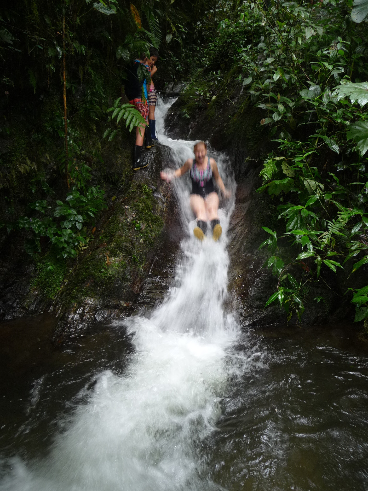 Cloud Forest 5-day Family Volunteer Experience, Ecuador