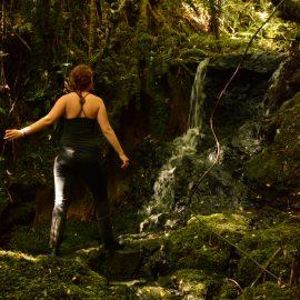 Volunteer walking in New Zealand forest