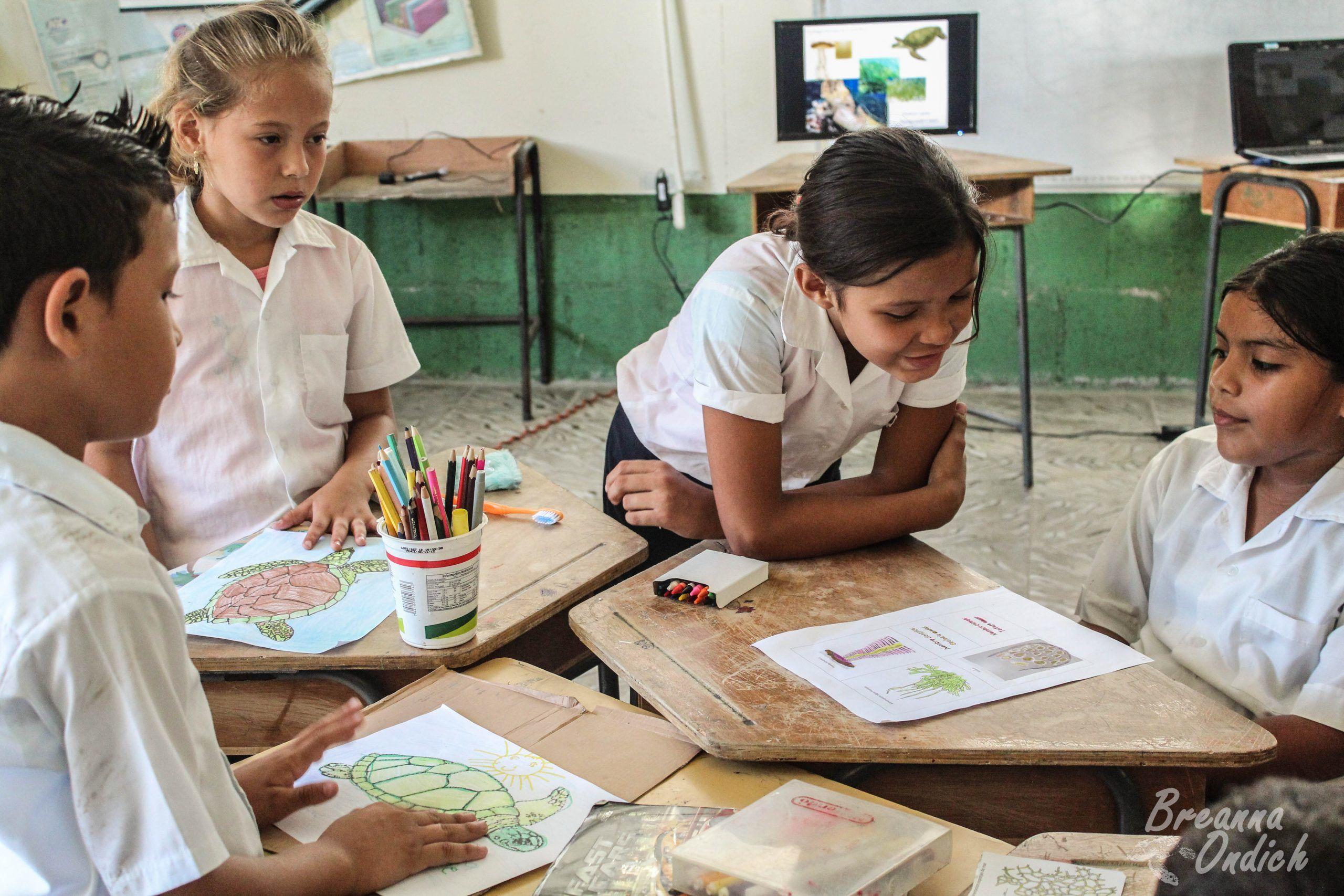 Playa Tortuga Environmental Education Volunteering Project, Costa Rica